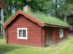 house with a grass roof