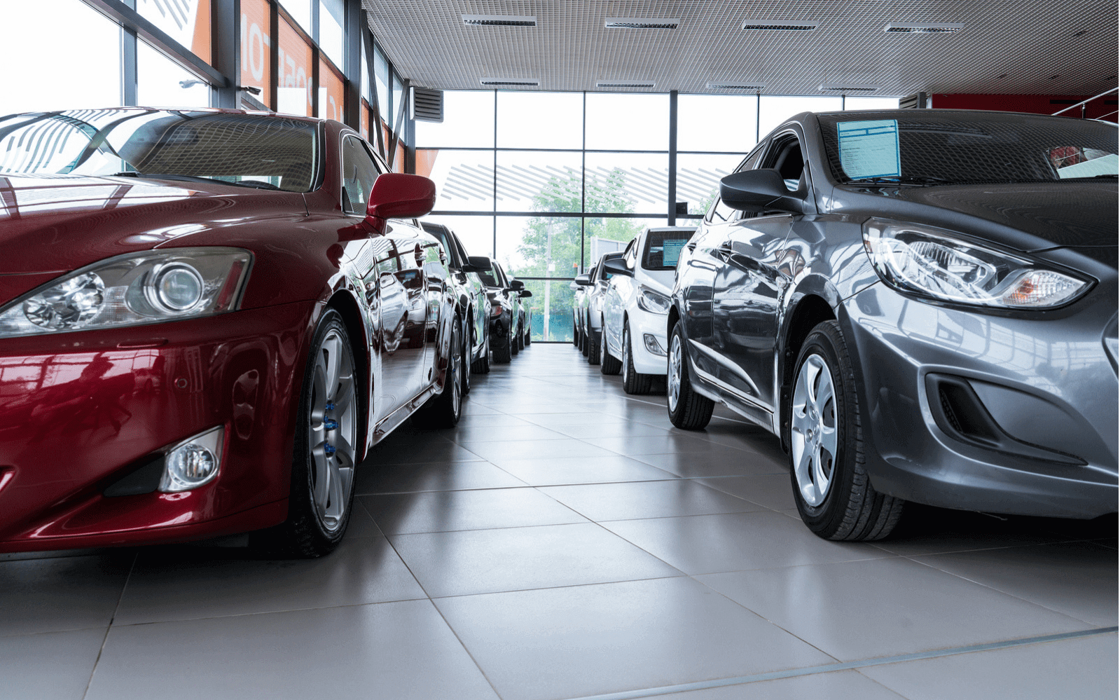 Used cars in showroom