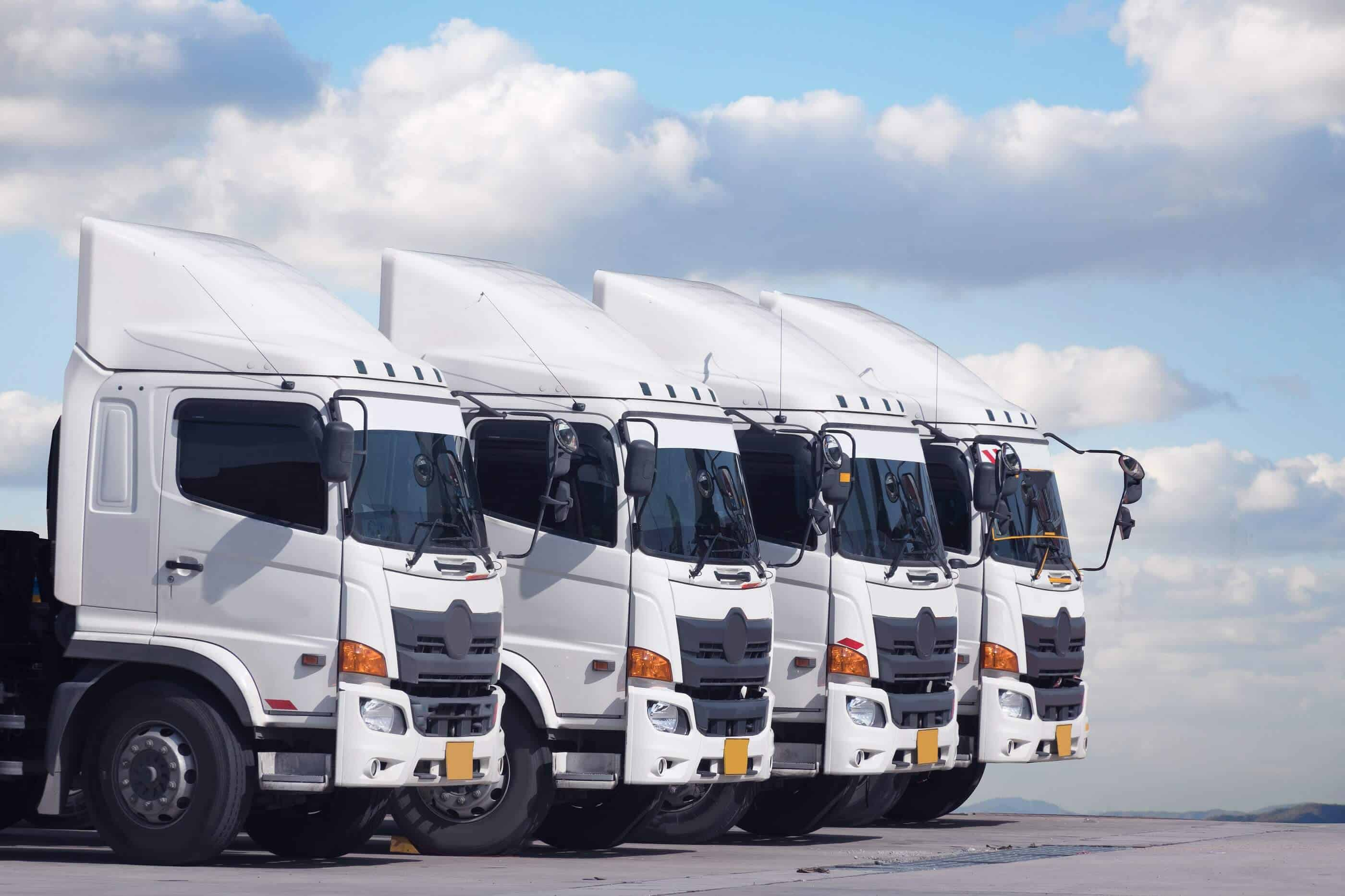 Line of large trucks