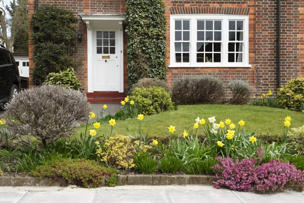 Front garden of house